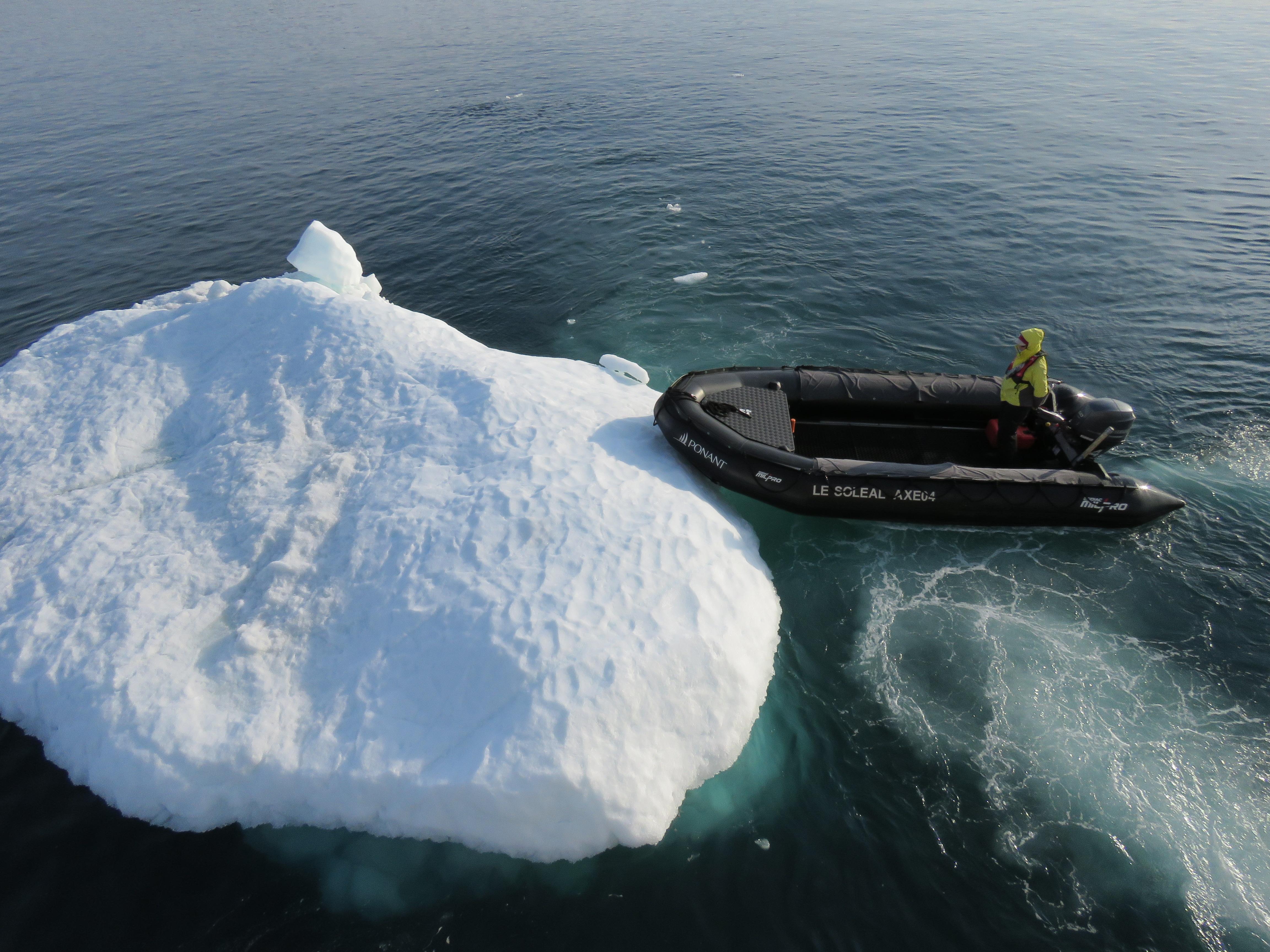 Iceberg zodiac
